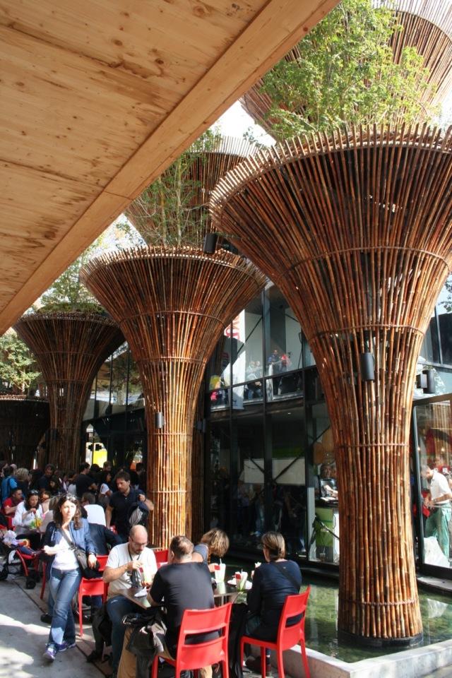 Bamboo pillars